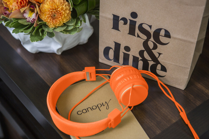 Canopy by Hilton headphones