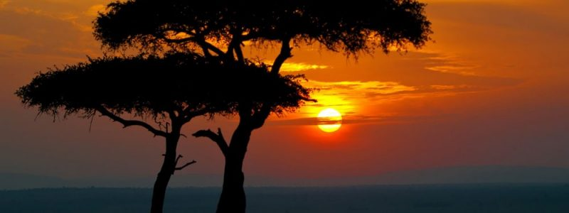 Masai-Mara-sunset-1000x563